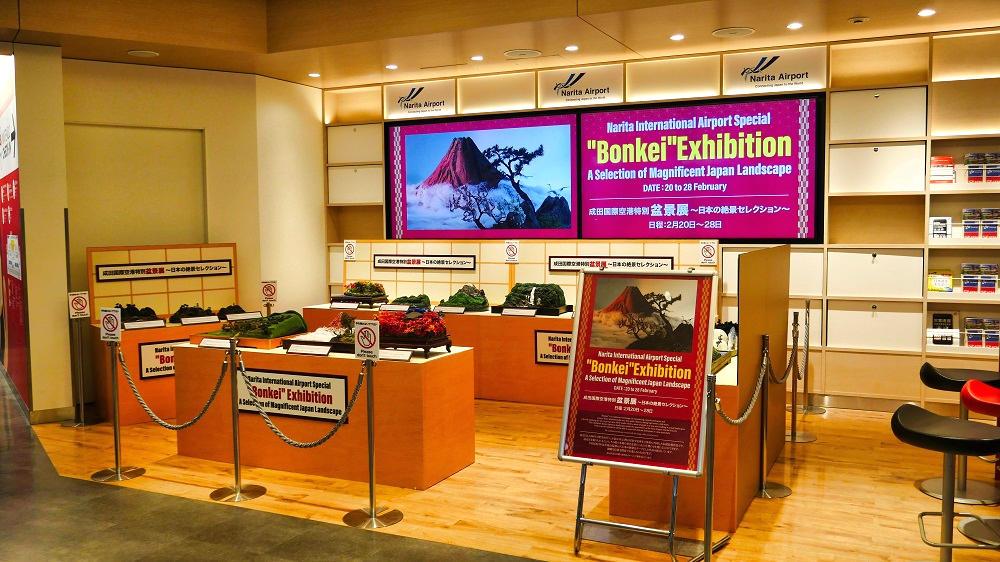 成田国際空港特別『盆景展』
